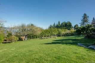 Photo 13: 5029 Wesley Rd in Saanich: SE Cordova Bay House for sale (Saanich East)  : MLS®# 837949