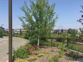 Photo 32: 308 2590 ANDERSON Way in Edmonton: Zone 56 Condo for sale : MLS®# E4213338