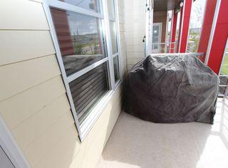 Photo 24: 308 2590 ANDERSON Way in Edmonton: Zone 56 Condo for sale : MLS®# E4213338