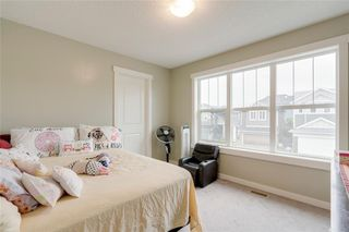 Photo 32: 5 SHERWOOD Road NW in Calgary: Sherwood Detached for sale : MLS®# A1042842