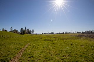 "Photo 9: 5291 MT LEHMAN Road in Abbotsford: Bradner House for sale in ""Mt. Lehman"" : MLS®# R2521485"