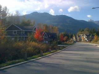 Photo 4: 41441 DRYDEN Road in Squamish: Brackendale Home for sale : MLS®# V921562
