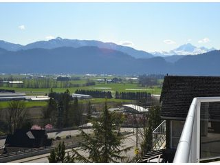 Photo 19: 2459 WHATCOM Road in Abbotsford: Abbotsford East House for sale : MLS®# F1408243