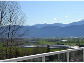 Photo 18: 2459 WHATCOM Road in Abbotsford: Abbotsford East House for sale : MLS®# F1408243