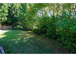 Photo 16: 549 E BRAEMAR Road in North Vancouver: Braemar House for sale : MLS®# V1085230