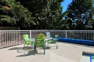 Photo 26: 549 E BRAEMAR Road in North Vancouver: Braemar House for sale : MLS®# V1085230