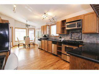 Photo 9: 25 HARVEST GLEN Court NE in Calgary: Harvest Hills House for sale : MLS®# C3650291