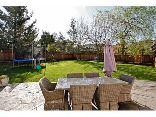 """Photo 19: 21568 48 Avenue in Langley: Murrayville House for sale in """"Murrayville"""" : MLS®# F1446378"""