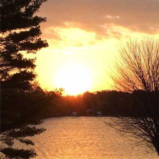 Photo 7: 1336 Portage Road in Kawartha Lakes: Rural Eldon House (Bungalow) for sale : MLS®# X3671198