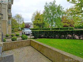 Photo 16: 107 535 Manchester Rd in VICTORIA: Vi Burnside Condo Apartment for sale (Victoria)  : MLS®# 758428