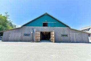 "Photo 15: 9061 EAGLE Road in Mission: Dewdney Deroche House for sale in ""HATZIC LAKE WATERFRONT"" : MLS®# R2174310"