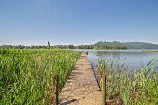 "Photo 1: 9061 EAGLE Road in Mission: Dewdney Deroche House for sale in ""HATZIC LAKE WATERFRONT"" : MLS®# R2174310"