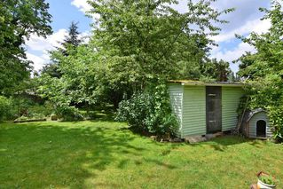 """Photo 13: 22828 COPPERBEECH Avenue in Langley: Fort Langley House for sale in """"Fort Langley"""" : MLS®# R2180083"""