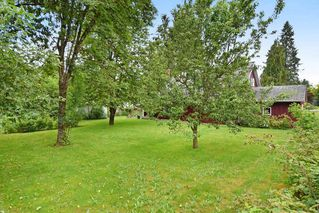 """Photo 14: 22828 COPPERBEECH Avenue in Langley: Fort Langley House for sale in """"Fort Langley"""" : MLS®# R2180083"""