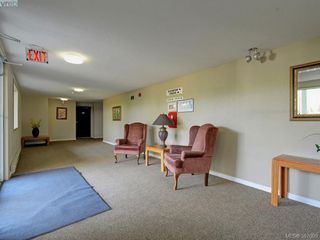 Photo 19: 205 1490 Garnet Rd in VICTORIA: SE Cedar Hill Condo for sale (Saanich East)  : MLS®# 777681