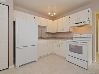 Photo 8: 205 1490 Garnet Rd in VICTORIA: SE Cedar Hill Condo for sale (Saanich East)  : MLS®# 777681