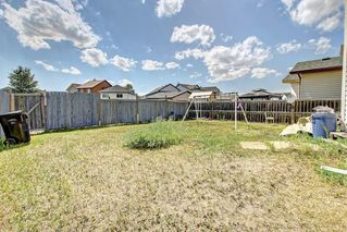 Photo 46: 6279 SADDLEHORN Drive NE in Calgary: Saddle Ridge Detached for sale : MLS®# C4197699