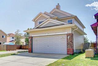 Photo 49: 6279 SADDLEHORN Drive NE in Calgary: Saddle Ridge Detached for sale : MLS®# C4197699