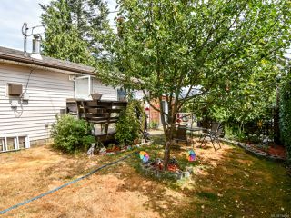 Photo 14: 398 HILCHEY ROAD in CAMPBELL RIVER: CR Willow Point House for sale (Campbell River)  : MLS®# 794910