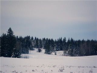 Main Photo: 307 55504 Rge Rd 13 Road: Rural Lac Ste. Anne County Rural Land/Vacant Lot for sale : MLS®# E4128685