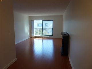 """Photo 5: 317 8231 GRANVILLE Avenue in Richmond: Brighouse Condo for sale in """"DOLPHIN PLACE"""" : MLS®# R2330230"""