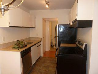 """Photo 6: 317 8231 GRANVILLE Avenue in Richmond: Brighouse Condo for sale in """"DOLPHIN PLACE"""" : MLS®# R2330230"""