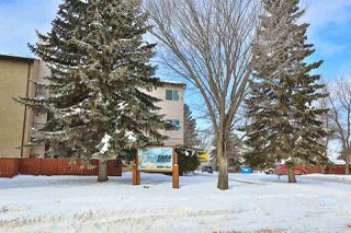 Photo 16: 308 14004 26 Street in Edmonton: Zone 35 Condo for sale : MLS®# E4145317
