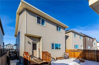 Photo 32: 360 COPPERPOND Boulevard SE in Calgary: Copperfield Detached for sale : MLS®# C4233493