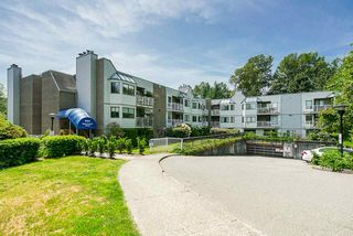 "Main Photo: 2 9584 MANCHESTER Drive in Burnaby: Cariboo Condo for sale in ""BROOKSIDE PARK"" (Burnaby North)  : MLS®# R2376673"