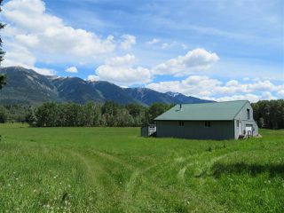 Main Photo: MCPHEE ROAD in Valemount: Valemount - Rural West Home for sale (Robson Valley (Zone 81))  : MLS®# R2376704