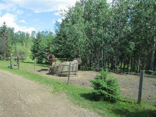Photo 18: 28-54104 RR35: Rural Lac Ste. Anne County House for sale : MLS®# E4160377