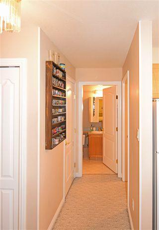 Photo 16: 1 9938 80 Avenue in Edmonton: Zone 17 Condo for sale : MLS®# E4160952