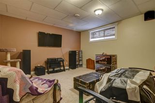 Photo 38: 46 Willowbend Place: Stony Plain House for sale : MLS®# E4181545