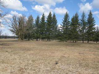 Photo 7: 32 GREWINSKI Drive in Lac Du Bonnet: Residential for sale (Lac du Bonnet)  : MLS®# 1108535