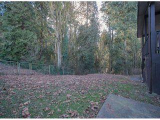 Photo 16: 10446 RIVER Road in Delta: Nordel House Duplex for sale (N. Delta)  : MLS®# F1403425