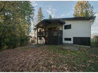 Photo 17: 10446 RIVER Road in Delta: Nordel House Duplex for sale (N. Delta)  : MLS®# F1403425