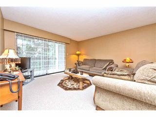 Photo 5: 235 2279 MCCALLUM Road in Abbotsford: Central Abbotsford Condo for sale : MLS®# F1432567