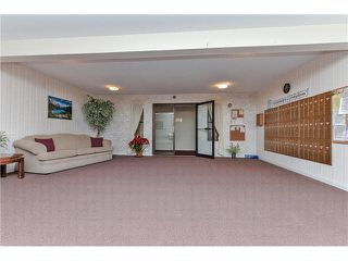 Photo 3: 235 2279 MCCALLUM Road in Abbotsford: Central Abbotsford Condo for sale : MLS®# F1432567