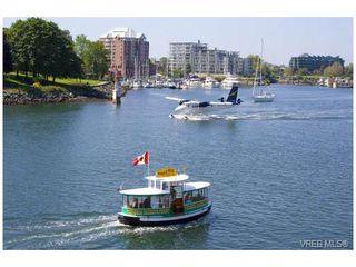 Photo 19: 500 Gore St in VICTORIA: Es Esquimalt House for sale (Esquimalt)  : MLS®# 728066