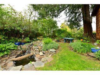 Photo 18: 500 Gore St in VICTORIA: Es Esquimalt House for sale (Esquimalt)  : MLS®# 728066