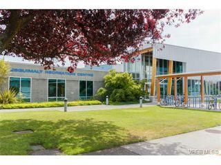 Photo 20: 500 Gore St in VICTORIA: Es Esquimalt House for sale (Esquimalt)  : MLS®# 728066
