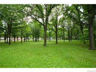 Photo 20: Rathgar Avenue in Winnipeg: Fort Rouge Residential for sale (1Aw)  : MLS®# 1617332