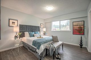 """Photo 15: 3641 VINEWAY Street in Port Coquitlam: Lincoln Park PQ House for sale in """"LINCOLN PARK"""" : MLS®# R2162522"""