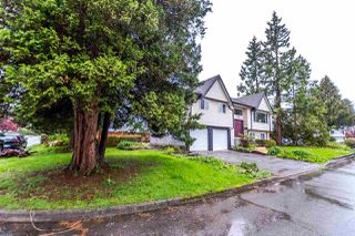 """Photo 3: 3641 VINEWAY Street in Port Coquitlam: Lincoln Park PQ House for sale in """"LINCOLN PARK"""" : MLS®# R2162522"""