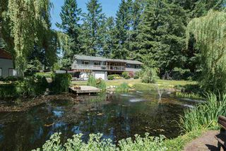 "Photo 8: 178 CLOVERMEADOW Crescent in Langley: Salmon River House for sale in ""Salmon River"" : MLS®# R2184985"