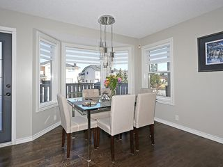 Photo 20: 196 HARVEST HILLS Drive NE in Calgary: Harvest Hills House for sale : MLS®# C4140961