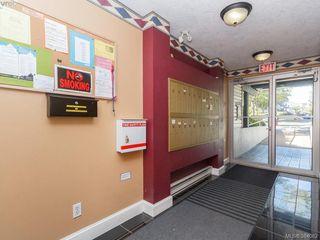 Photo 12: 105 445 Cook St in VICTORIA: Vi Fairfield West Condo Apartment for sale (Victoria)  : MLS®# 771947