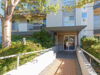 Photo 11: 105 445 Cook St in VICTORIA: Vi Fairfield West Condo Apartment for sale (Victoria)  : MLS®# 771947