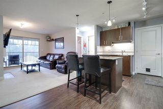 Photo 2: 411 12020 207A STREET in Maple Ridge: Northwest Maple Ridge Condo for sale : MLS®# R2226279