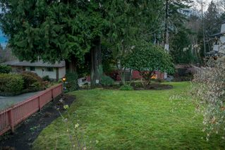 Photo 27: 3737 CALDER Avenue in North Vancouver: Upper Lonsdale House for sale : MLS®# R2233482